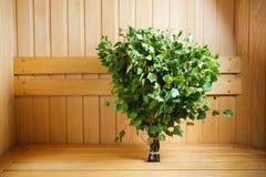 束绿色桦树枝杈 库存图片