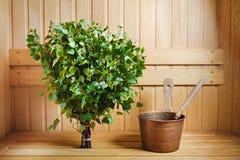 束绿色桦树枝杈 免版税库存照片