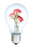 束electrobulb上升了 免版税库存照片