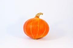来回橙色葫芦 免版税库存图片