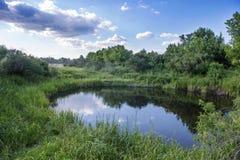 来回的池塘 免版税库存图片