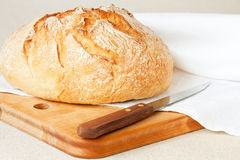 来回的面包 免版税库存照片