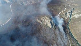来自有路和河的森林的浓烟空中英尺长度在森林旁边 股票视频