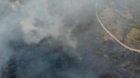 来自有路的森林的浓烟空中英尺长度在森林旁边 股票录像