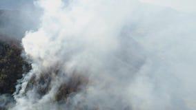 来自森林的浓烟空中英尺长度 影视素材