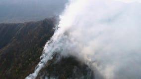 来自森林的浓烟空中英尺长度 股票录像
