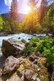 来自Savica瀑布,河Sava ne的冷的山小河 图库摄影