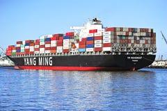 杨明海洋运输船 免版税库存照片