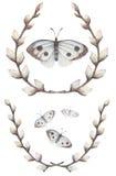 杨柳花圈与蝴蝶的 向量例证