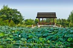 杭州亭子在公园 免版税库存图片