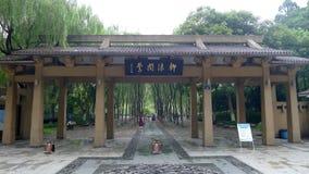 杭州西湖,唱歌在杨柳的奥廖拉诺 免版税库存图片