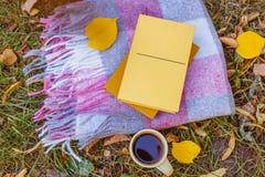 杯与一条温暖的毯子和一本浪漫书的热的咖啡在 免版税库存图片