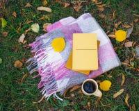 杯与一条温暖的毯子和一本浪漫书的热的咖啡在 库存图片