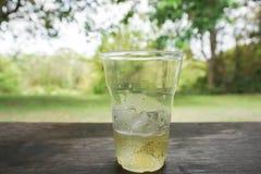 杯与冰的啤酒在木桌上 免版税图库摄影