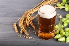 杯与啤酒花球果树和麦子的泡沫似的啤酒在黑木背景 免版税库存照片