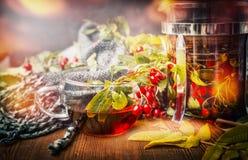 杯与围巾、秋叶和莓果的健康茶在土气木背景 热的秋天饮料 免版税库存照片