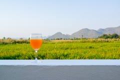 杯与山和草地后面地面的橙味饮料  图库摄影