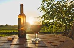 杯与瓶、黄柏和红色莓果的红葡萄酒在与绿色领域、灌木和日落的木桌上在背景中 库存照片