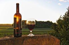 杯与瓶的红葡萄酒在与绿色领域、灌木和日落的树桩在背景中 库存照片