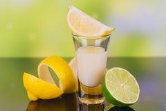 杯与石灰和柠檬的奶油色利口酒在绿色背景 免版税图库摄影