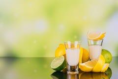 杯与石灰和柠檬的奶油色利口酒在绿色背景 免版税库存照片
