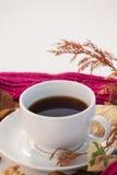 杯与秋叶和羊毛布料的红茶 免版税图库摄影