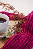 杯与秋叶和羊毛布料的红茶 免版税库存照片