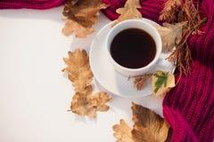杯与秋叶和羊毛布料的红茶 库存照片