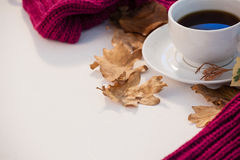 杯与秋叶和羊毛布料的红茶 库存图片