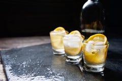 杯伏特加酒用柠檬和冰 免版税库存照片