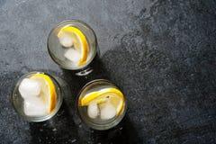 杯伏特加酒用柠檬和冰 库存图片