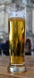 杯低度黄啤酒 免版税库存图片