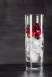 杯冰用莓果鹅莓红色黑醋栗和水 刷新的鸡尾酒 玻璃水瓶柑橘饮料冰橙色夏天水 免版税库存照片