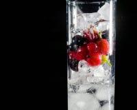 杯冰用莓果鹅莓红色黑醋栗和水 刷新的鸡尾酒 玻璃水瓶柑橘饮料冰橙色夏天水 库存图片