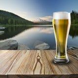 杯冰镇啤酒 免版税库存照片