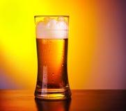 杯刷新的啤酒 免版税库存照片