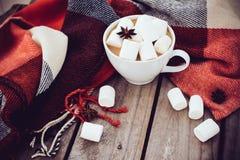杯可可粉和温暖的格子花呢披肩 免版税库存图片