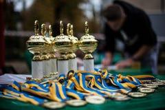 杯和奖牌 免版税库存照片