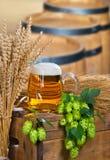 杯啤酒和蛇麻草 免版税库存照片