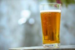 杯啤酒在一张木桌上 免版税库存照片