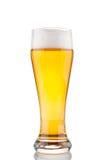 杯啤酒特写镜头 库存照片