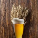 杯啤酒用在木头的麦子 免版税库存图片