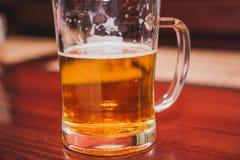 杯啤酒 在圈子的金黄啤酒 库存图片