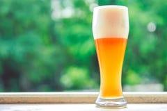 杯啤酒 库存图片