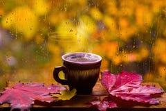 杯在一个多雨秋天窗口的热的咖啡 库存照片