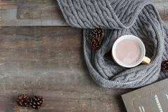 杯在一条灰色围巾的可可粉 免版税库存图片