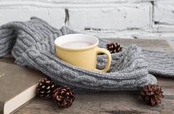 杯在一条灰色围巾的可可粉 免版税库存照片