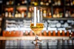 杯在一间客栈的低度黄啤酒有bokeh背景 免版税库存照片