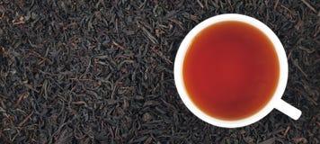 杯在叶子的红茶,全景 免版税库存照片