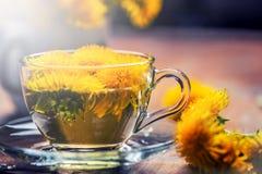 杯在土气木桌上的蒲公英茶 免版税库存照片